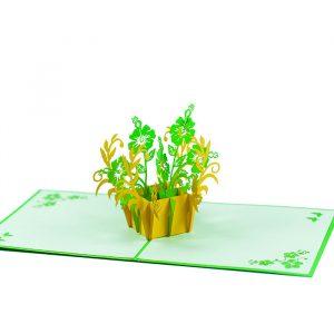 FL015-Rose-mallow-floral-Flower-pop-up-greeting-card-flower 3D cards-birthday-pop-up-cards-CharmPop-wholsale-edit (1)