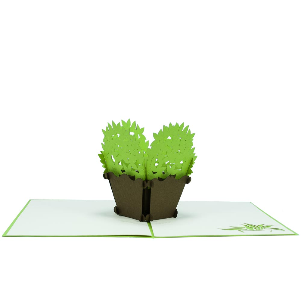 Basil pop up card birthday pop up card origami art custom pop up basil plant pop up card mightylinksfo