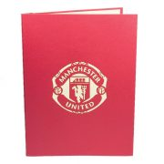 ST002-Manchester-Stadium-gift-pop-up-card-3D-Pop-up-Card-football card-Custom-Design-sport 3D card-Charm Pop (4)
