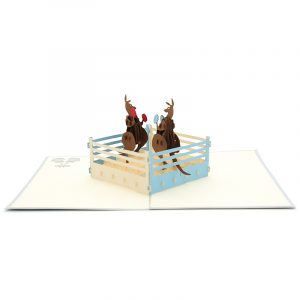 Kangaroo-boxing-pop-up-card-3d-greeting-cards-Vietnam-pop-up-card-pop-up-card-wholesale-kirigami-new-design-card-manufacturer-kirigami-card-australia (3)