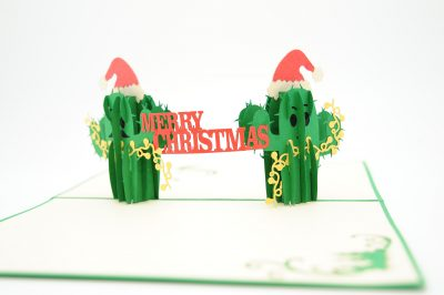 Christmas Cactus twin pop up card- pop up card wholesale-pop up card manufacturer-christmas pop up card (1)