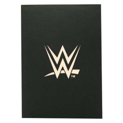 Wrestling pop up card–pop up card wholesale-popupcard manufacturer-Christmas pop up card (2)