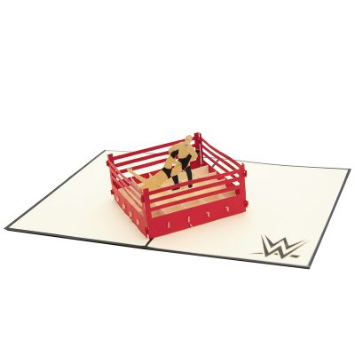 Wrestling pop up card–pop up card wholesale-popupcard manufacturer-Christmas pop up card (4)
