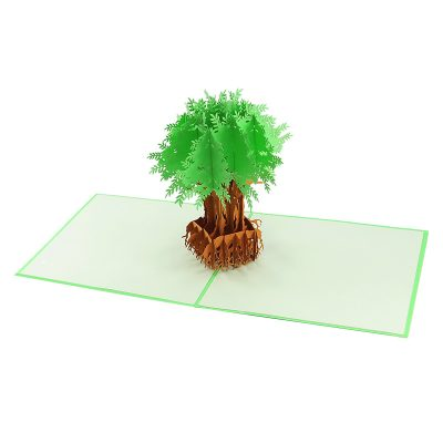 FL045C- Olive tree pop up card- pop up olive tree greeting cards- kirigami olive tree cards- olive greeting cards-Charmpop-cards (4)