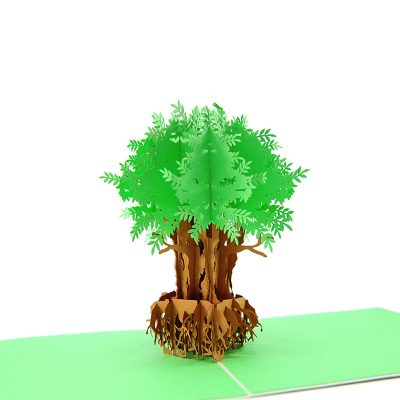 FL045G- Olive tree pop up card- pop up olive tree greeting cards- kirigami olive tree cards- olive greeting cards-Charmpop-cards (1)