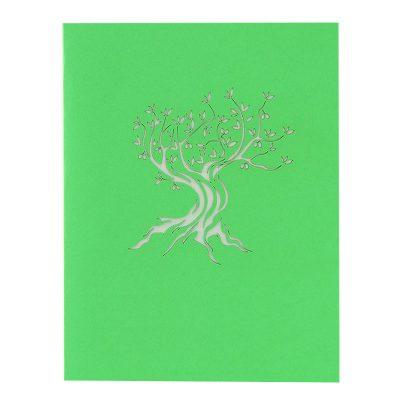 FL046C- Olive tree pop up card- pop up olive tree greeting cards- kirigami olive tree cards- olive greeting cards-Charmpop-cards (2)