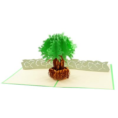 FL046C- Olive tree pop up card- pop up olive tree greeting cards- kirigami olive tree cards- olive greeting cards-Charmpop-cards (4)