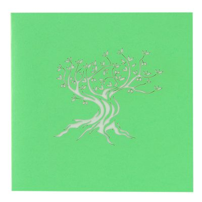 FL046Y- Olive tree pop up card- pop up olive tree greeting cards- kirigami olive tree cards- olive greeting cards-Charmpop-cards (4)
