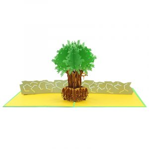 FL046Y- Olive tree pop up card- pop up olive tree greeting cards- kirigami olive tree cards- olive greeting cards-Charmpop-cards (5)