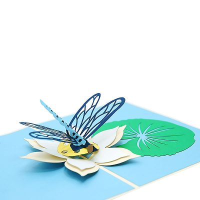 dragon-fly-greeting-cards–pop-up-cards-wholesale4