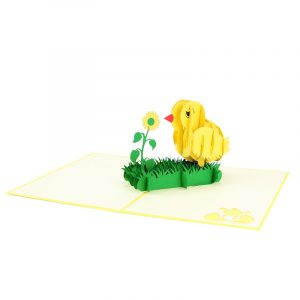 baby chicken pop up card baby chic greeting card handmade 3D wholesale (4)
