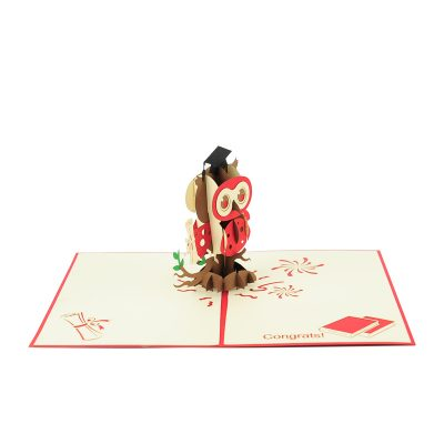 graduation-owl-pop-up-cards-wholesale-congratulation-handmade-greeting-card-supplier-13 (4)