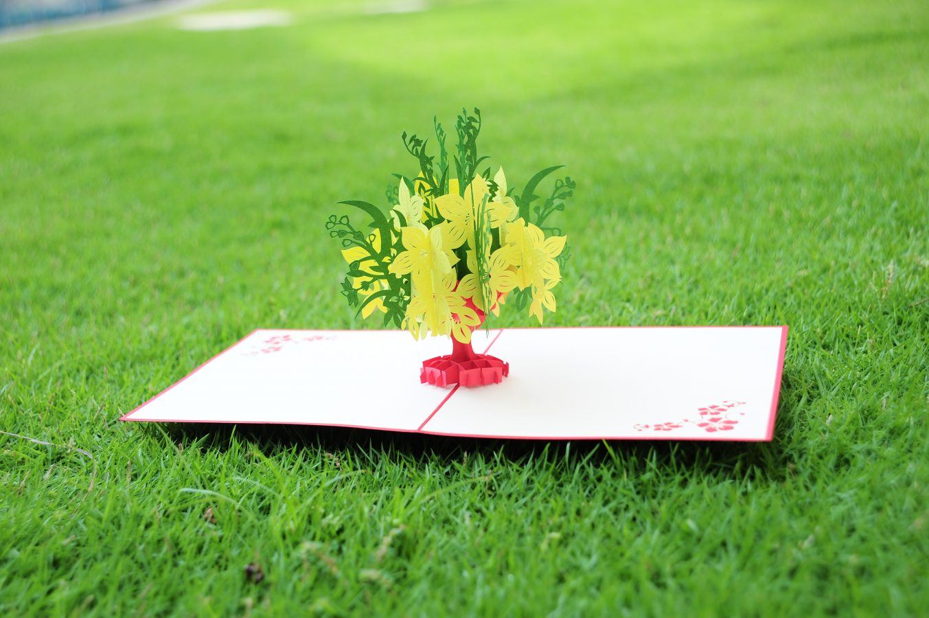 Yellow apricot flower pop up card