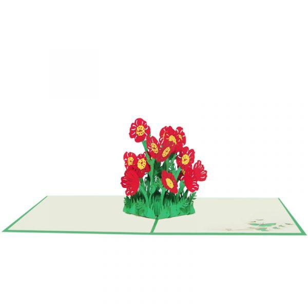 FL058-Poppy flower pop up cards-poppy greeting cards wholesale-CharmPop (4)