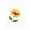Sunflower-ladybug-pop-up-card-3d-cards-manufacturer-cover