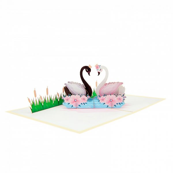swan-couple-pop-up-cards-3d-cards-supplier-side