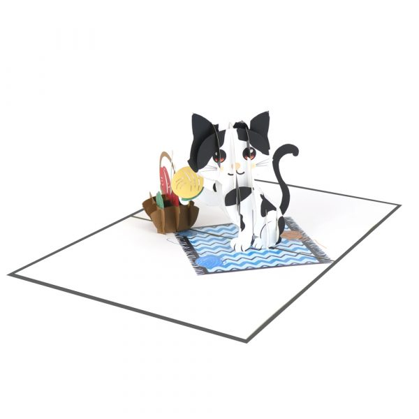 Cat-and-yarn-pop-up-card–3d-cards-supplier-front
