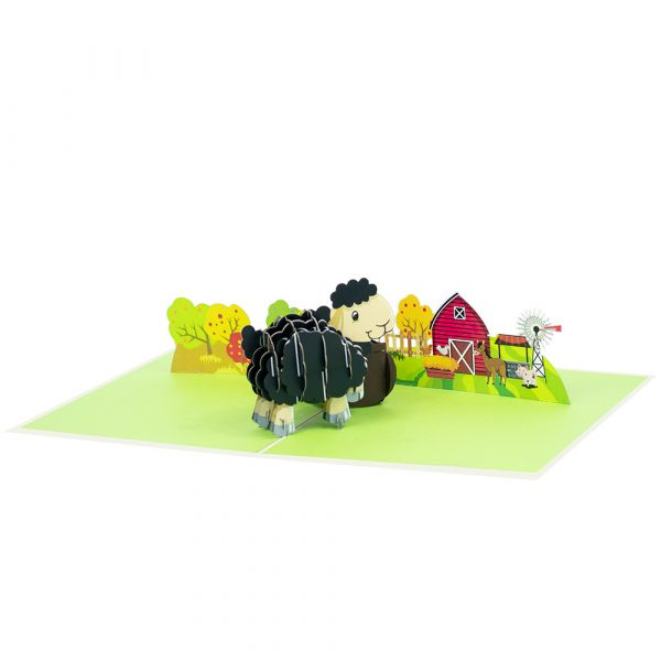 baby-sheep-pop-up-cards-3d-cards-manufacturer-front-black
